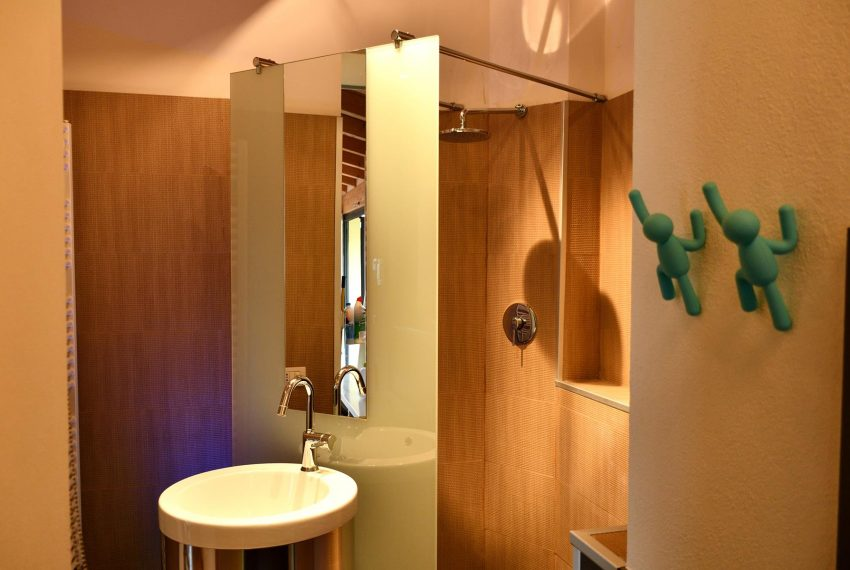 22. Dependance bathroom with shower