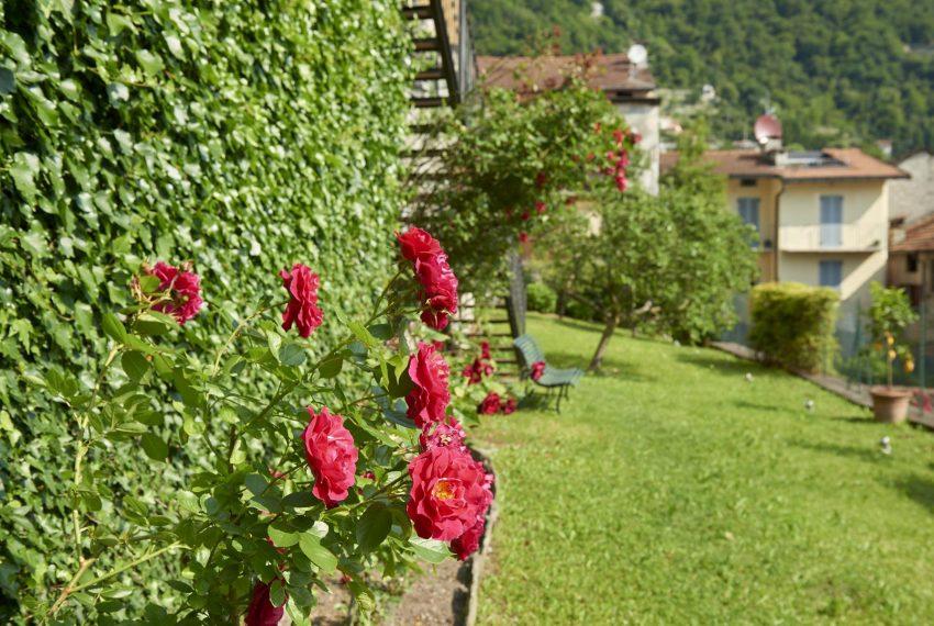 9.Flowers on Lake Como