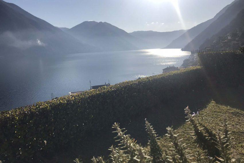2. Garden lake view